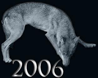 Rollenspieljahr 2006