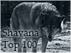 Shayana Top 100 Rudel
