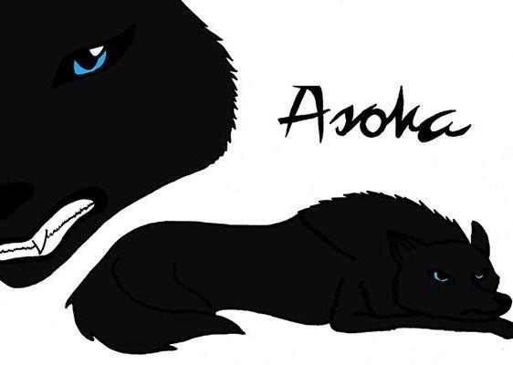 Digitale Zeichnung der Wölfin Asoka