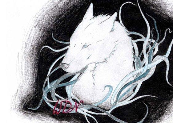 Zeichnung von Catori