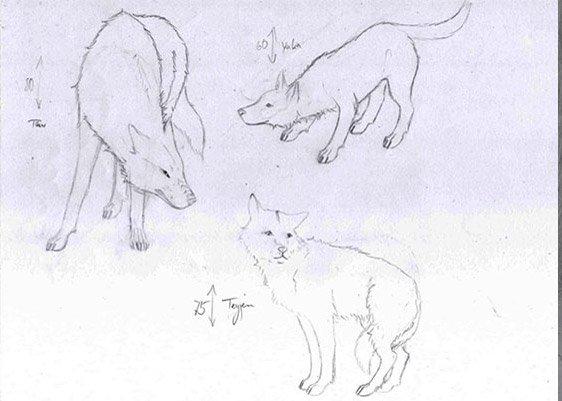 Wölfe von Catori illustriert