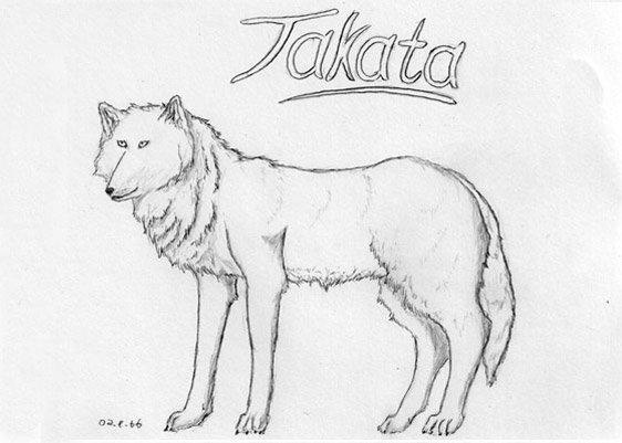Digitale Zeichnung der Wölfin Takata